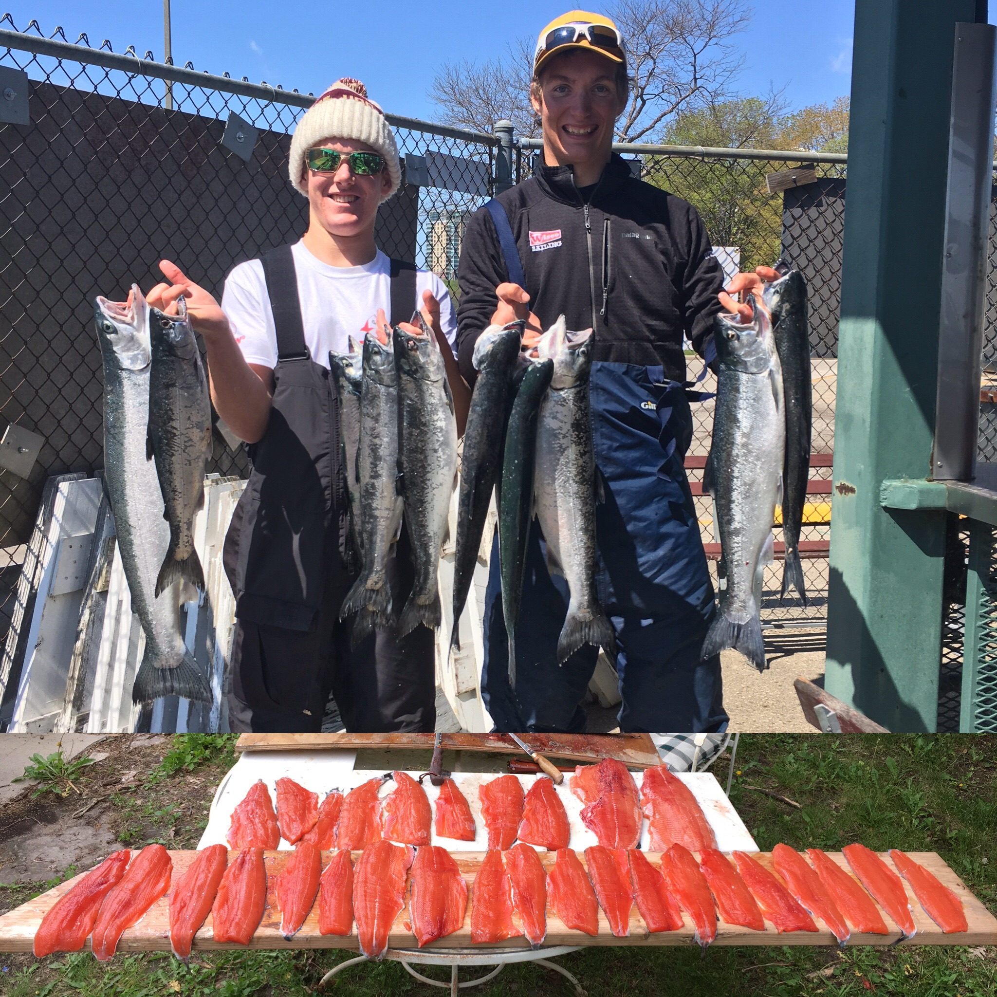 Lake Michigan Coho Salmon Charter