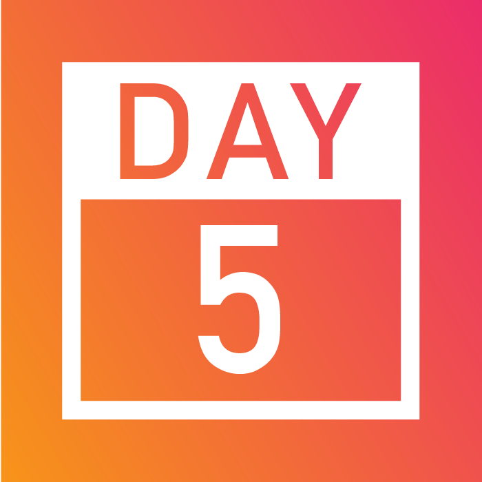 Days 1-5_Website-15.png