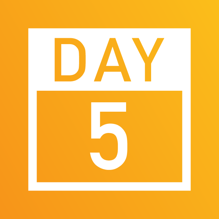Days 1-5_Website-05.png