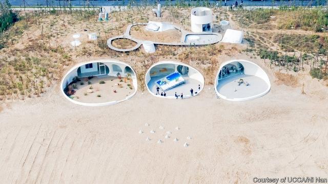 UCCA Dune.jpg