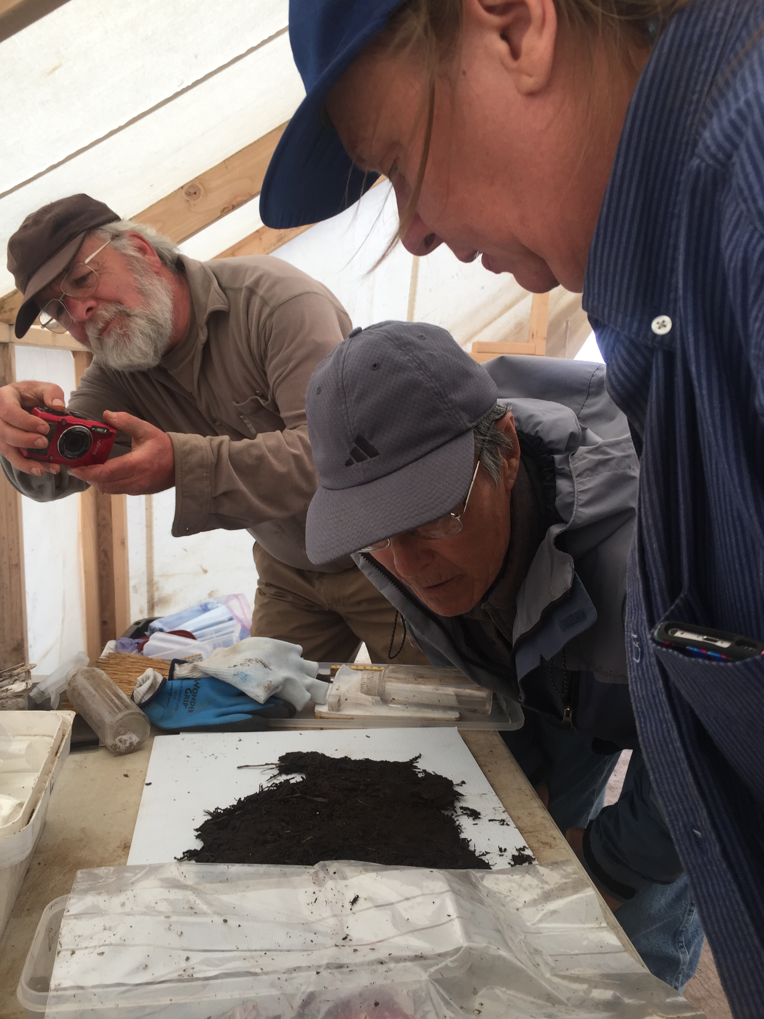 Rick Knecht and John Smith and Tricia examining this woven basket we found while removing a house floor layer.