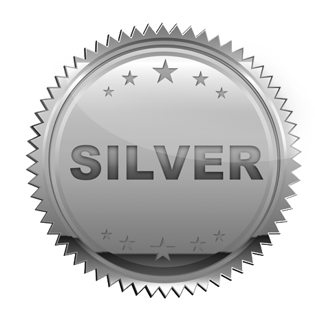 Silver-Badge.png