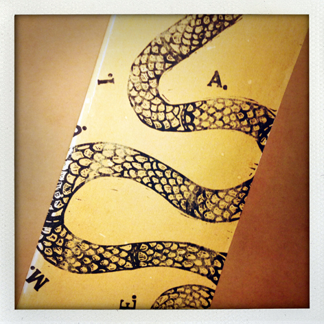Political folio: detail of Jacob Habner's print packaging