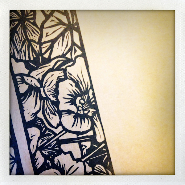Nature/Nurture folio: detail of Lucy Timbrell's print packaging