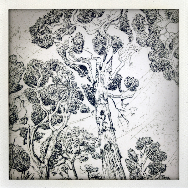 Nature/Nurture folio: detail of Michele Lane's print