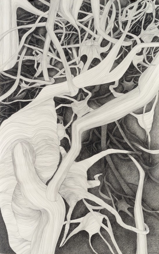 Petra Dolezalova Troyn, 'Neurons' (detail), ink drawing (unique state)