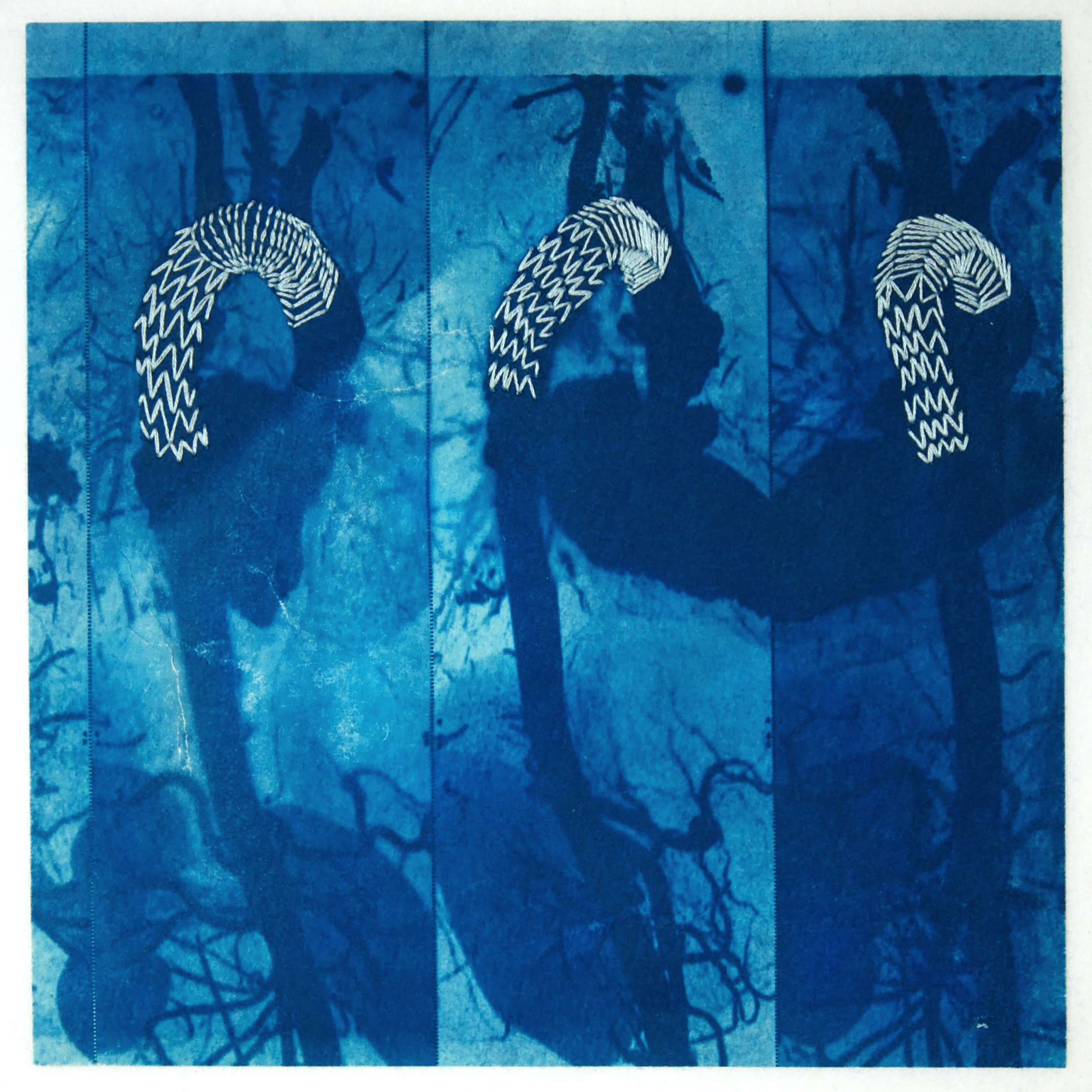 Michele Lane, Conduit #2' (detail), cyanotype with embroidery (unique state)