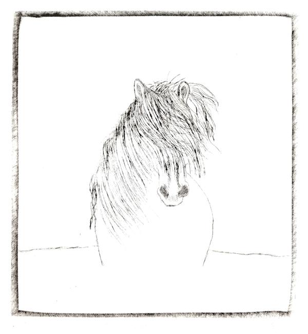 Gillian Leahy 17 Can't Seahorse, acrylic drypoint LR.jpg