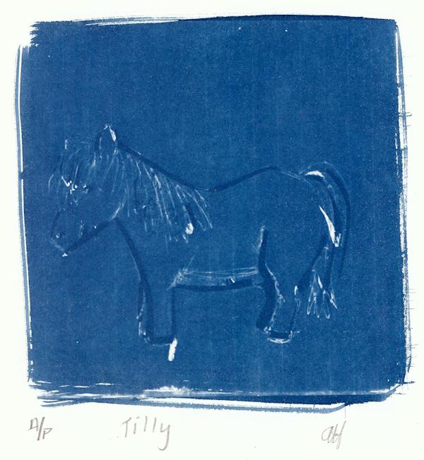 Angus Hambrook 17 Tilly, cyanotype LR.jpg