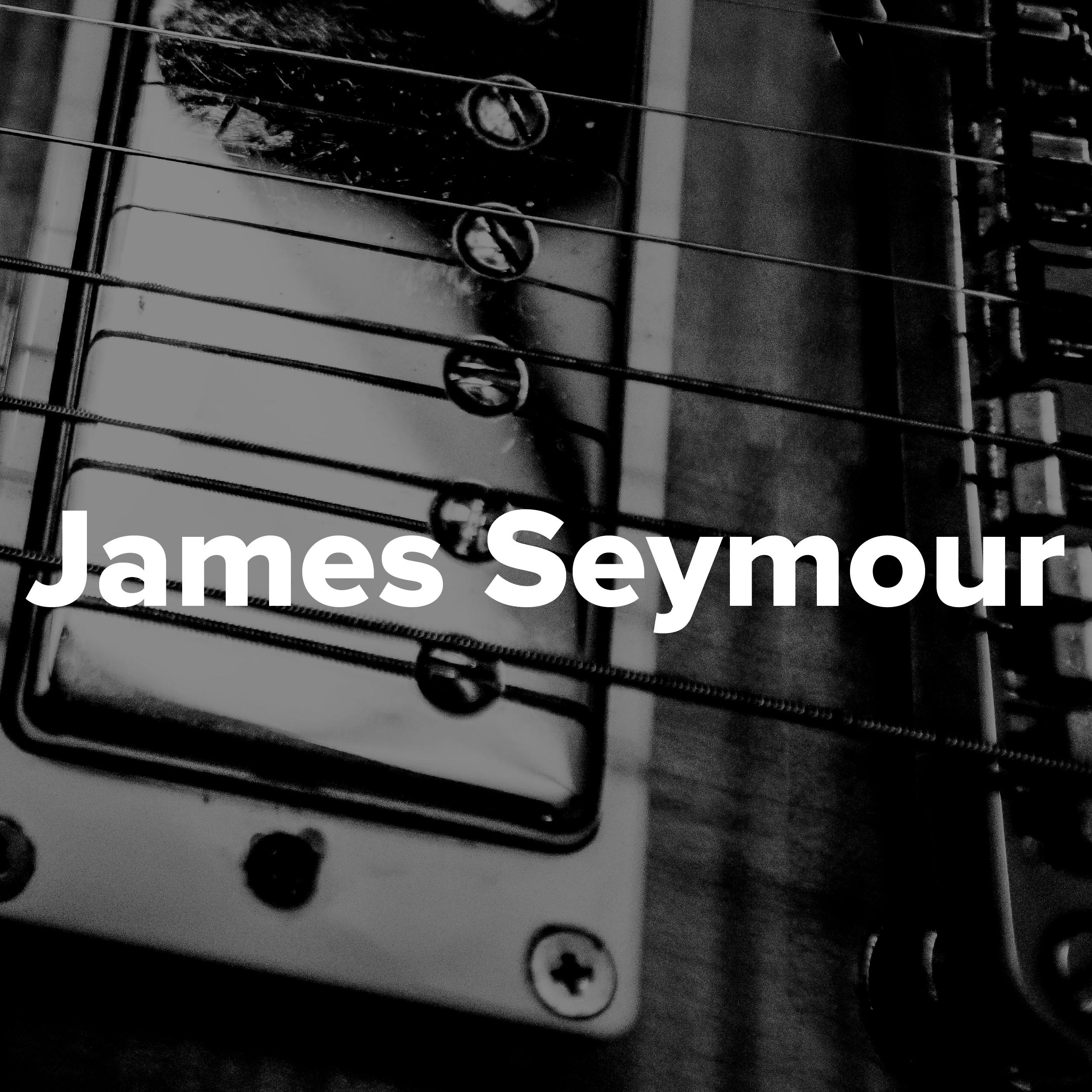 JamesSeymour-01.jpg