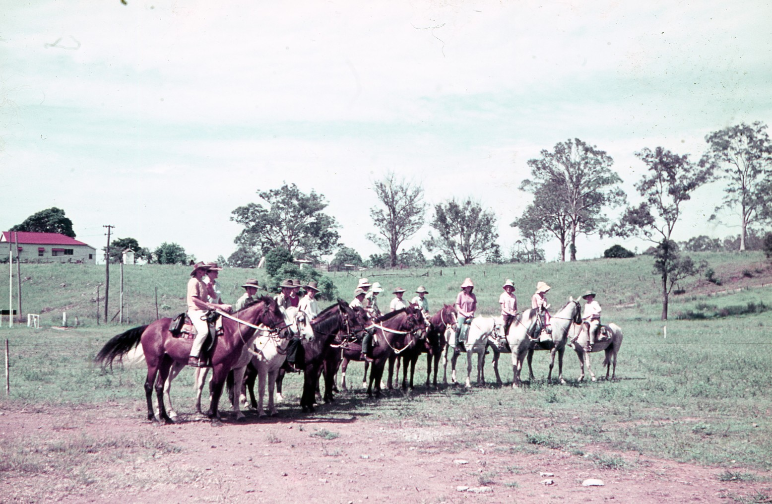 Our history - Moggill Pony Club was established in April 1961