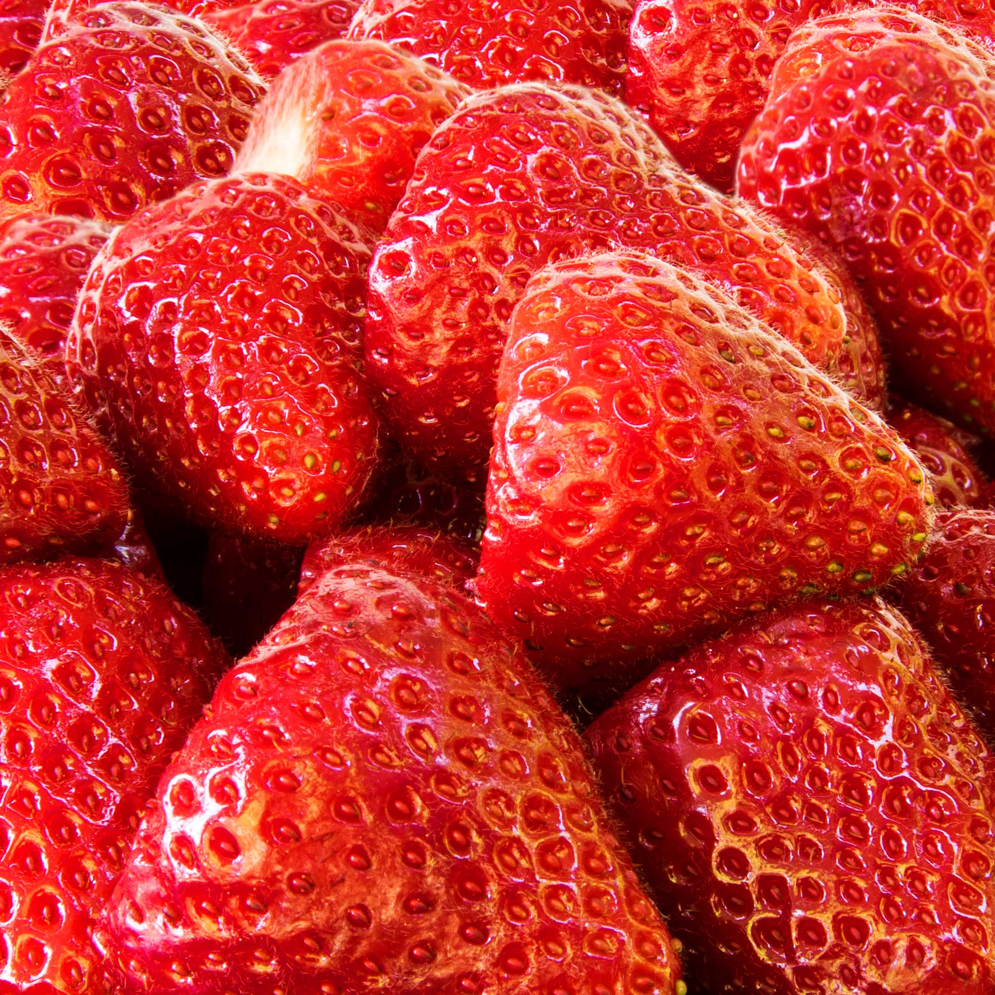 Seasons Strawberries by Riverport Trading