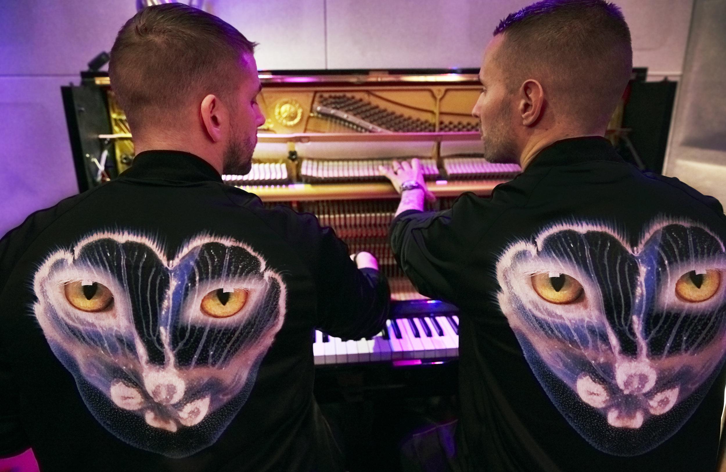 Piano1seafoxvs1 .jpg