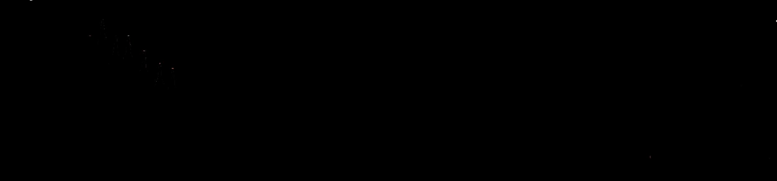 logo faema 5000 x 1170 Black FAEMA.png