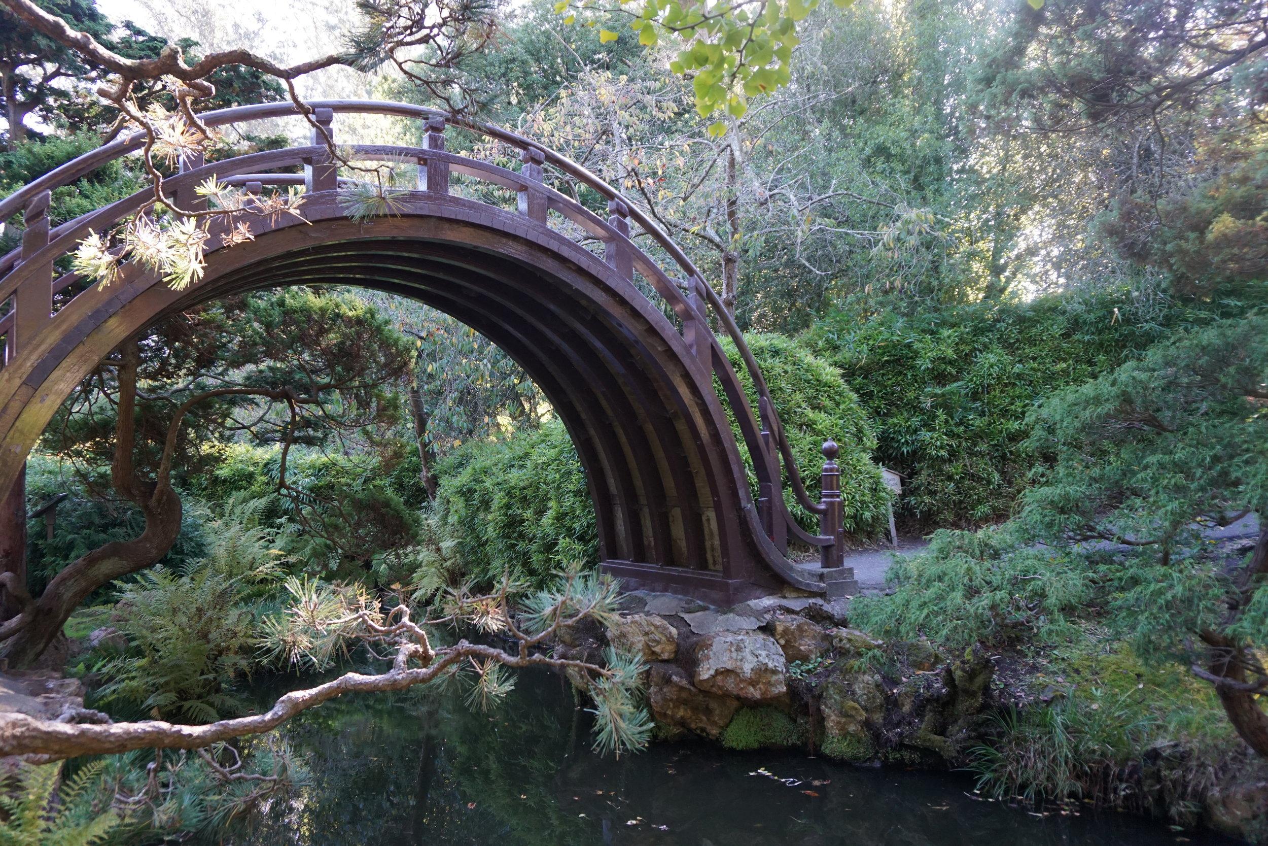 The Drum Bridge in the Japanese Tea Garden.