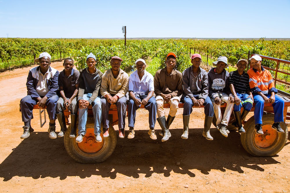 How CCBSA helped to establish one of South Africa's most successful agricultural empowerment projects     Find out more