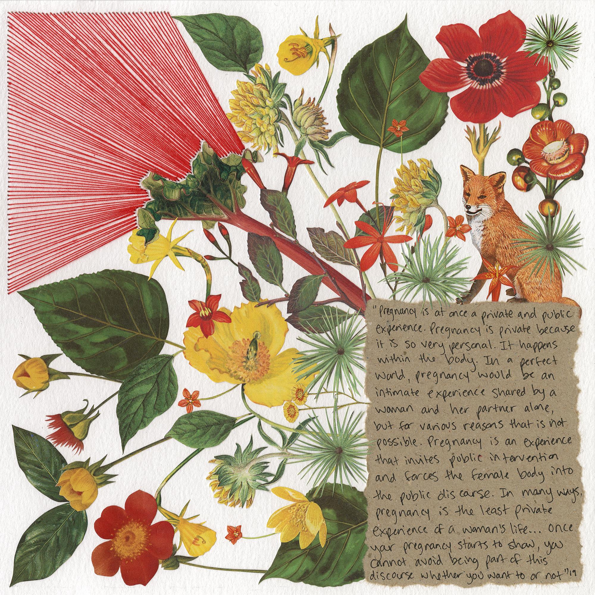 week 38 (rhubarb)