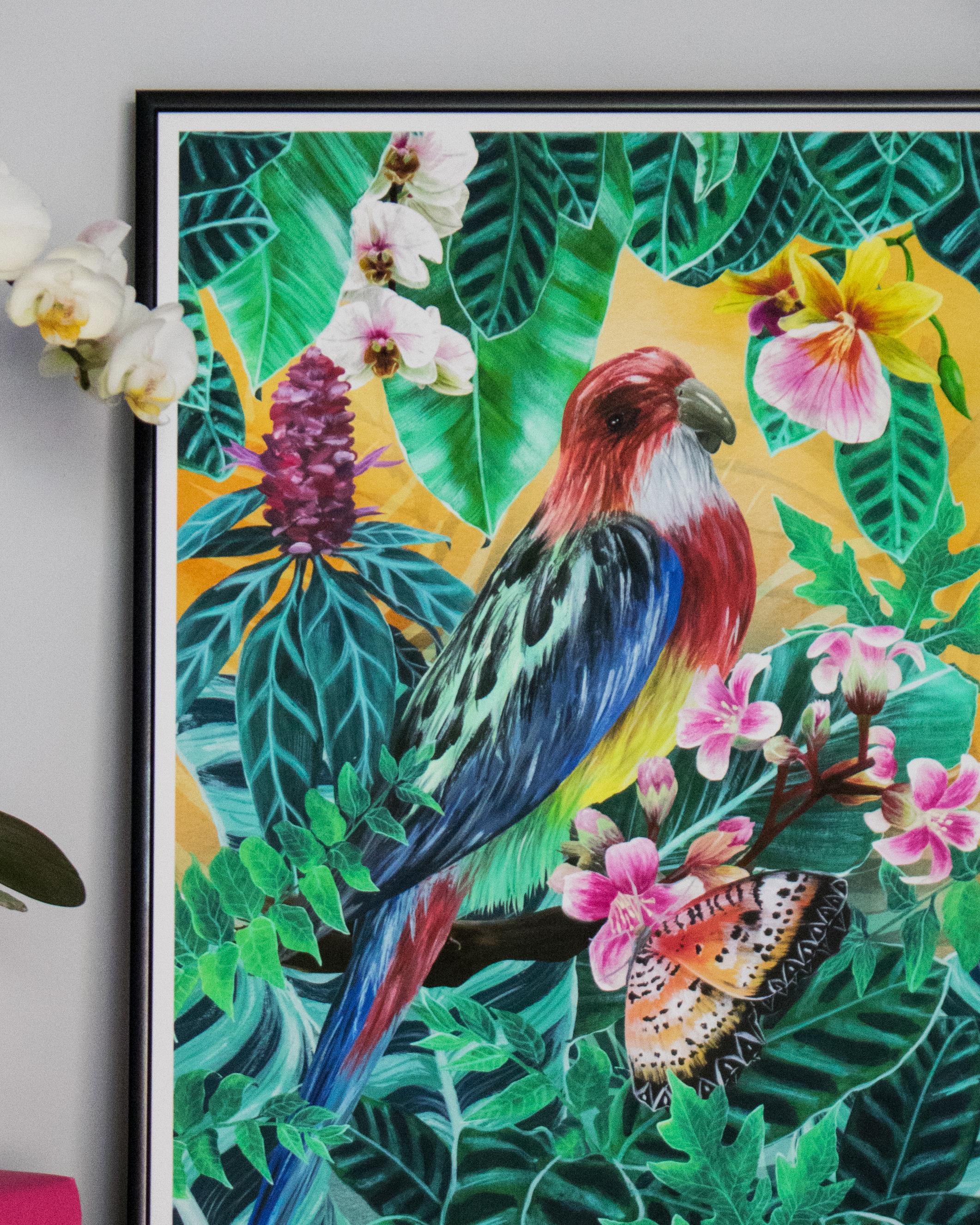 A Parrot's Paradise -