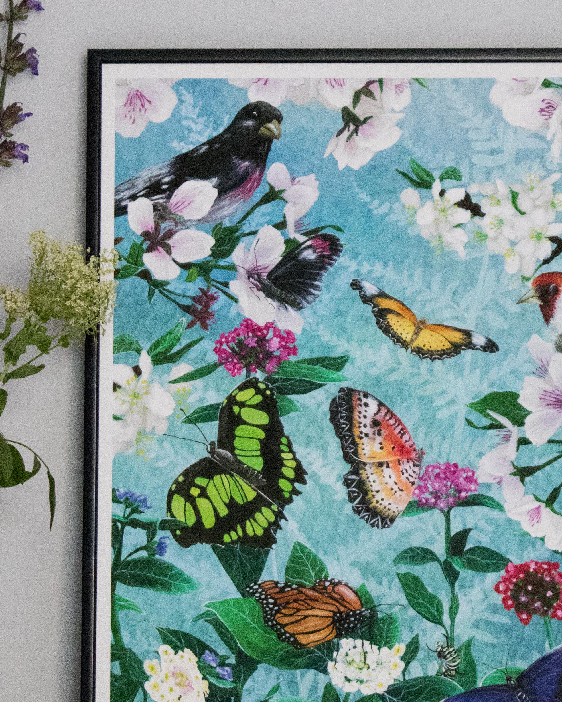 The Butterflies' Beauty -