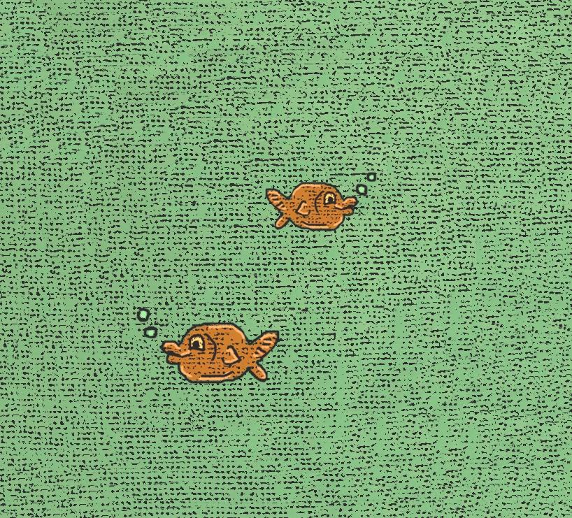 goldfish bright.jpg
