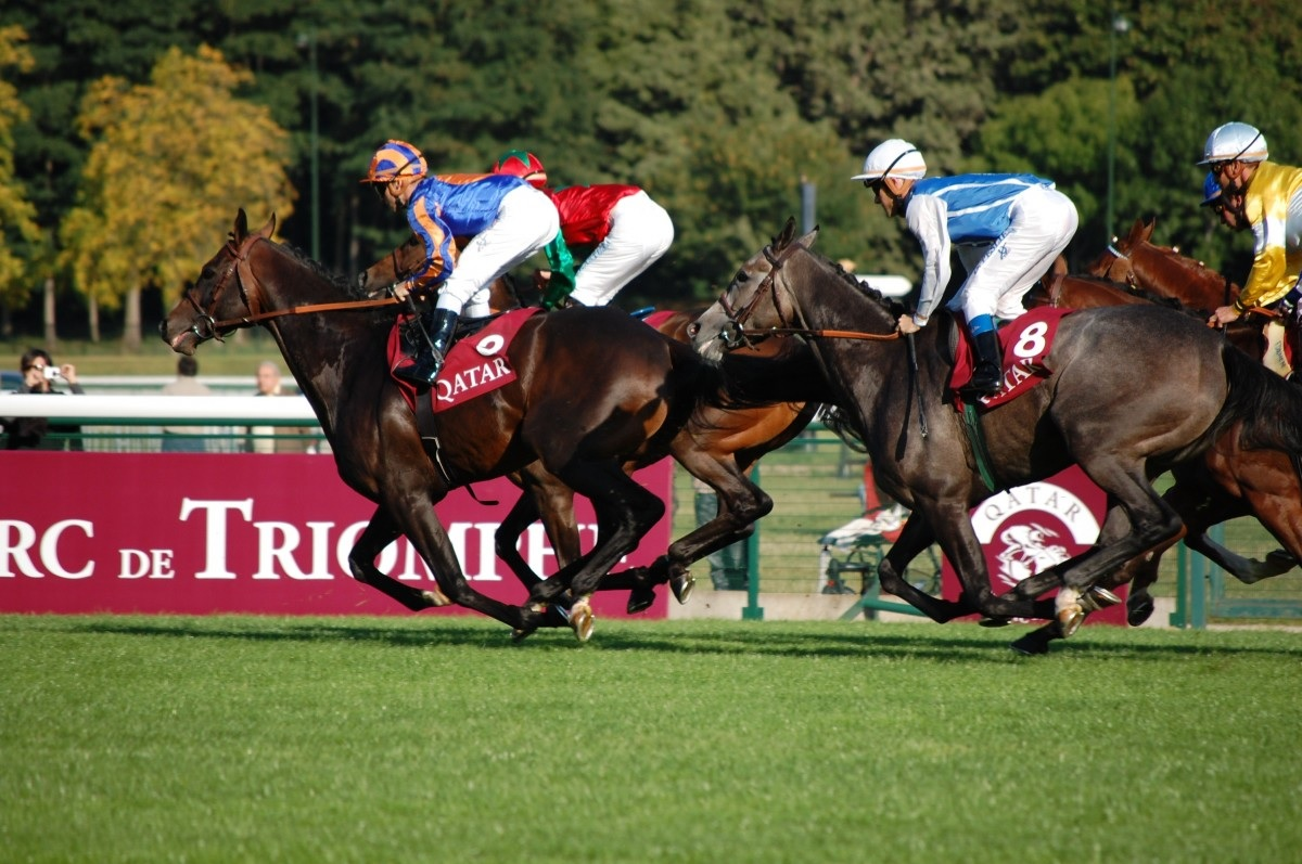 Paris Longchamp Brasserie - Longchamp Racecourse, ParisSaturday 5 & Sunday 6 October 2019£395 Per Person