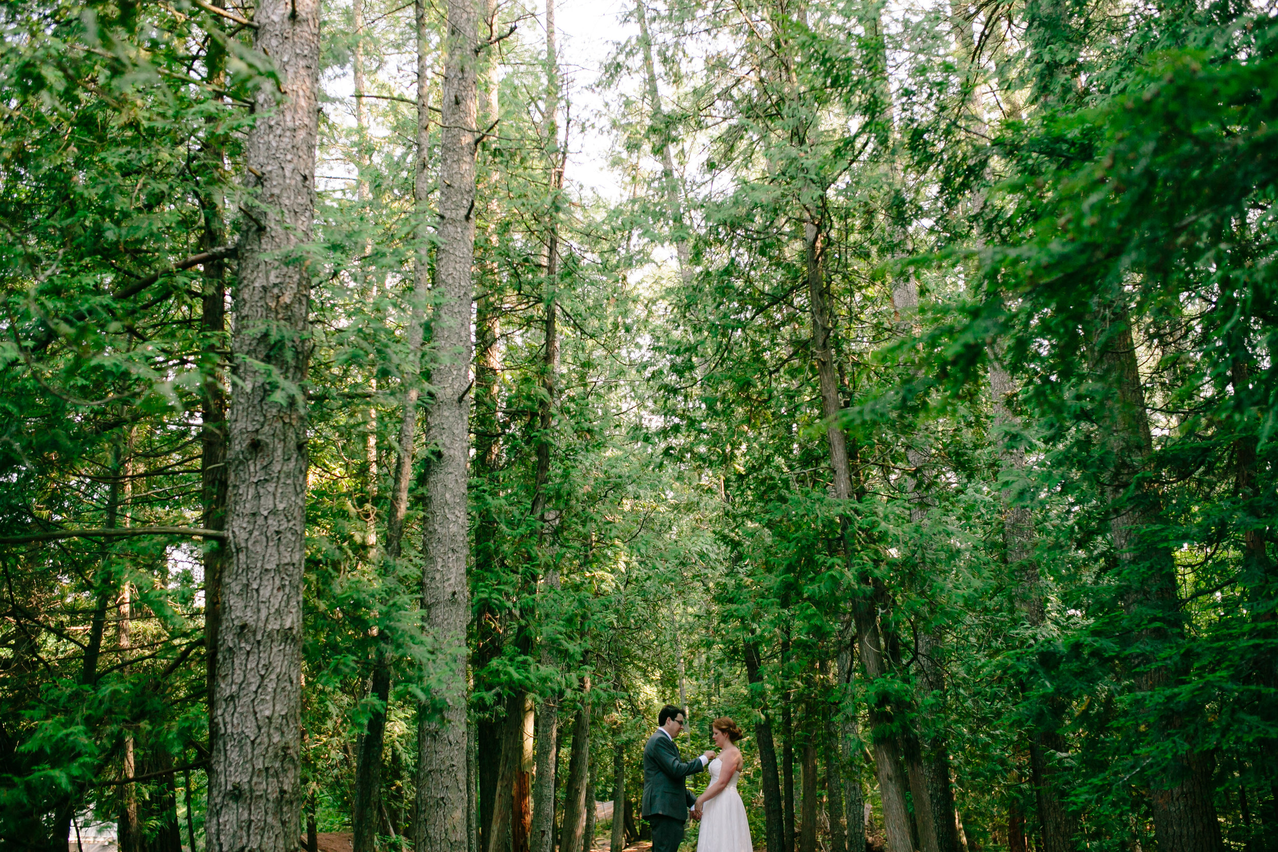 Bride & Groom in Pine Trees