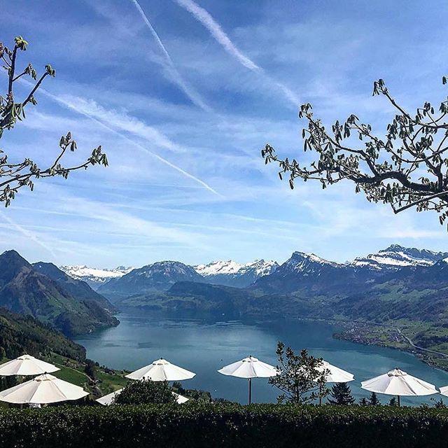 #Repost @music2peopleofficial ・・・ Was für eine grandiose Aussicht auf den Vierwaldstättersee. . . #vorgespräch #hochzeit #wedding #dj #music2people #hotelvillahonegg #vierwaldstättersee #ennetbürgen #schweiz