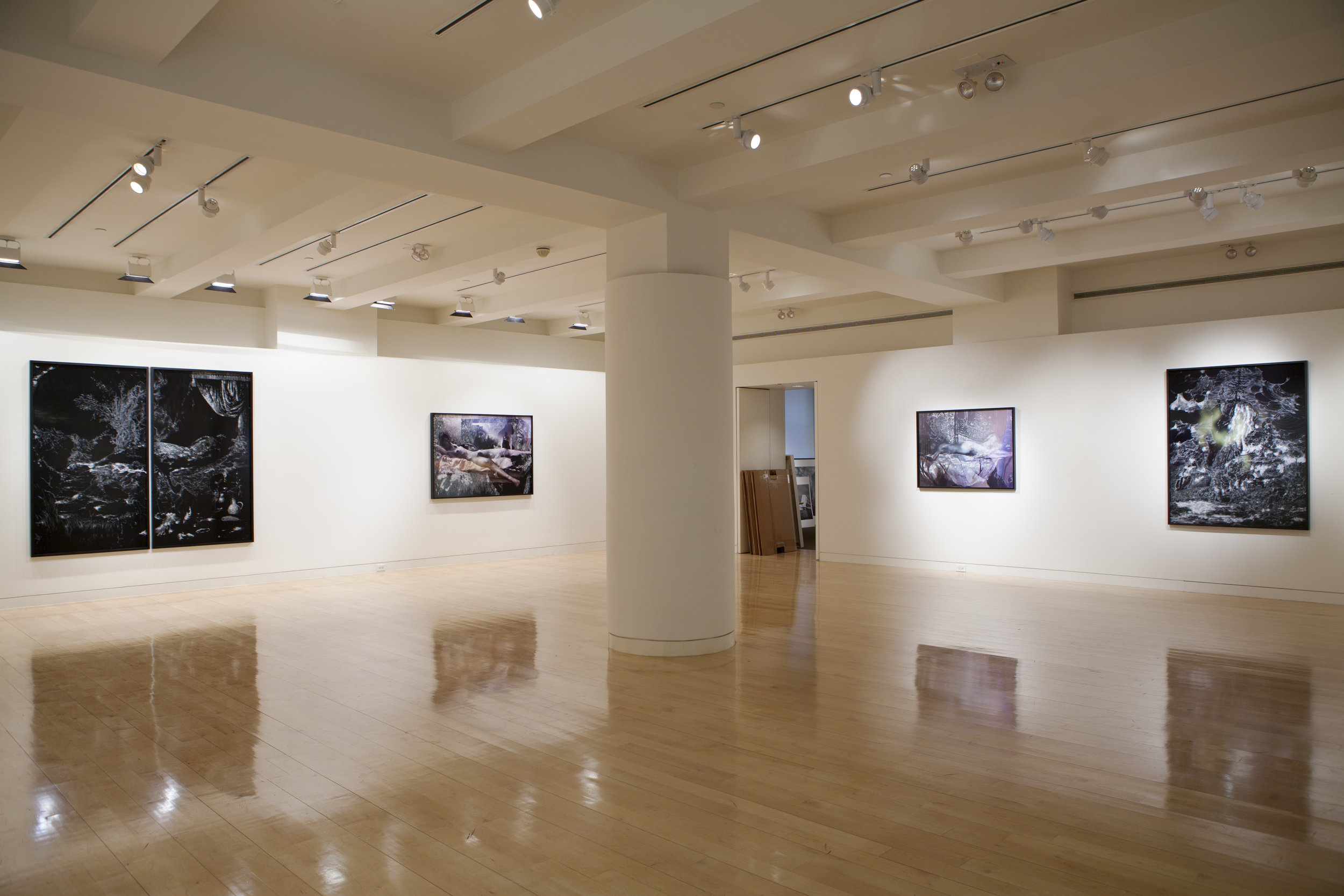 Nudes and Revolutions install-Houk 2011_02.jpg
