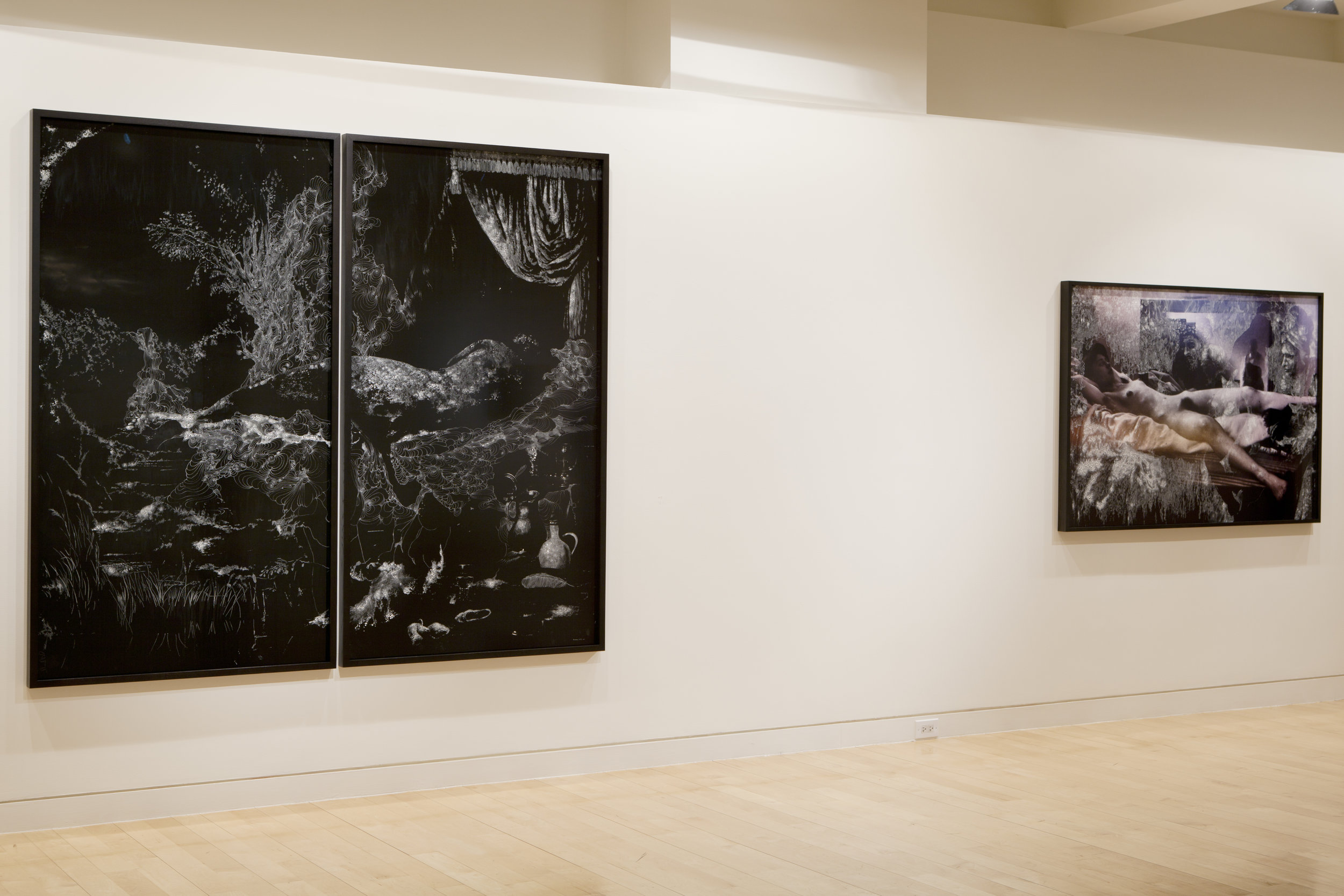 Nudes and Revolutions install-Houk 2011_06.jpg