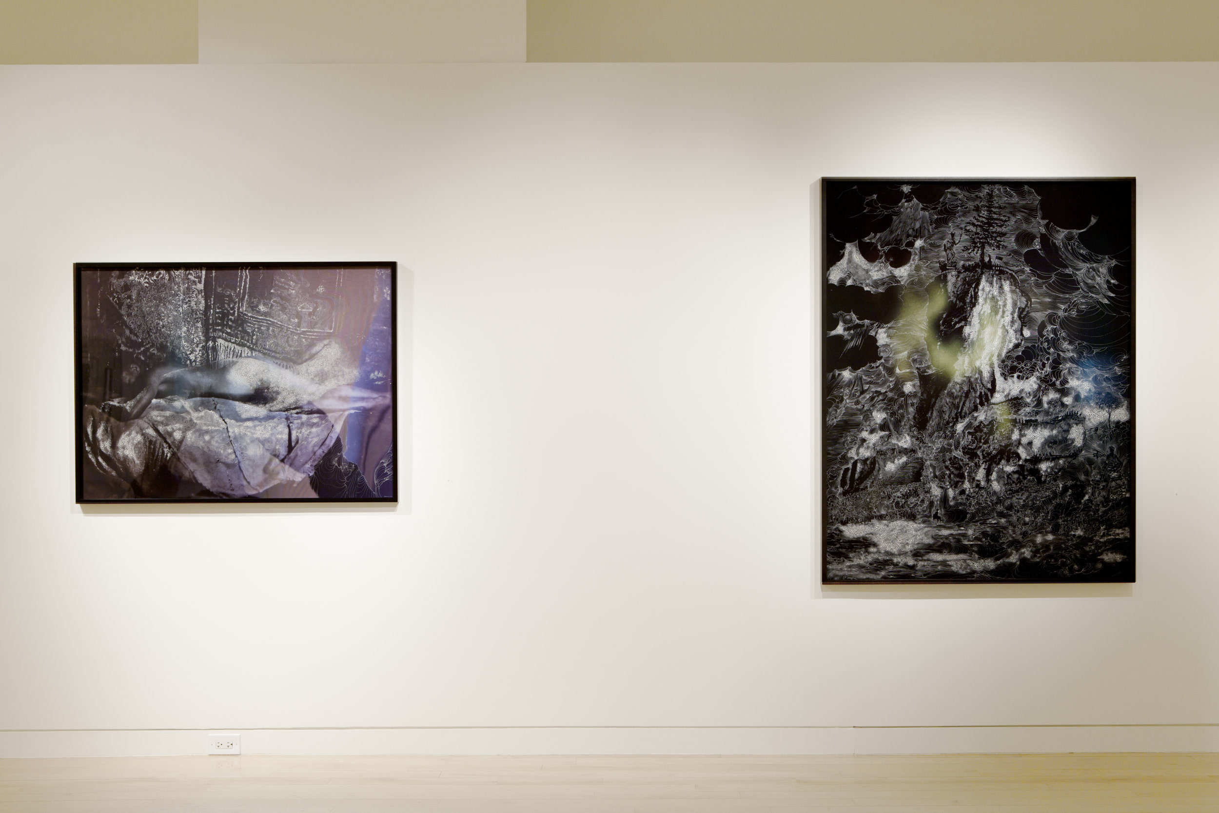 Nudes and Revolutions install-Houk 2011_08.jpg