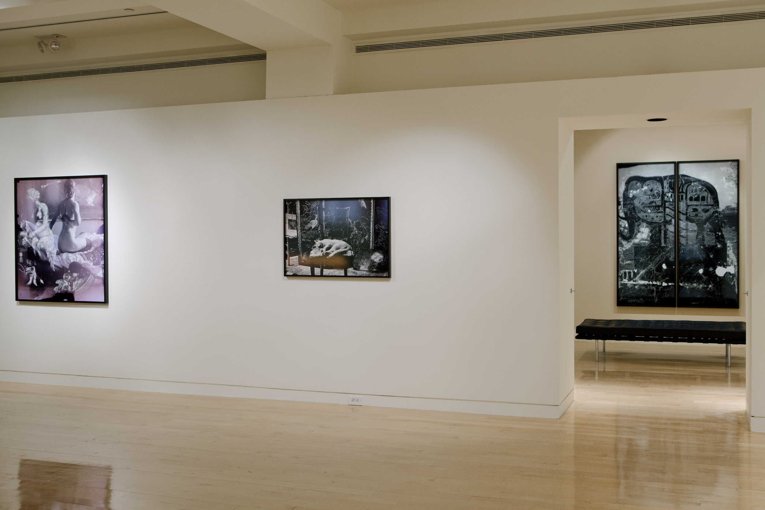 Nudes and Revolutions install-Houk 2011_09.jpg
