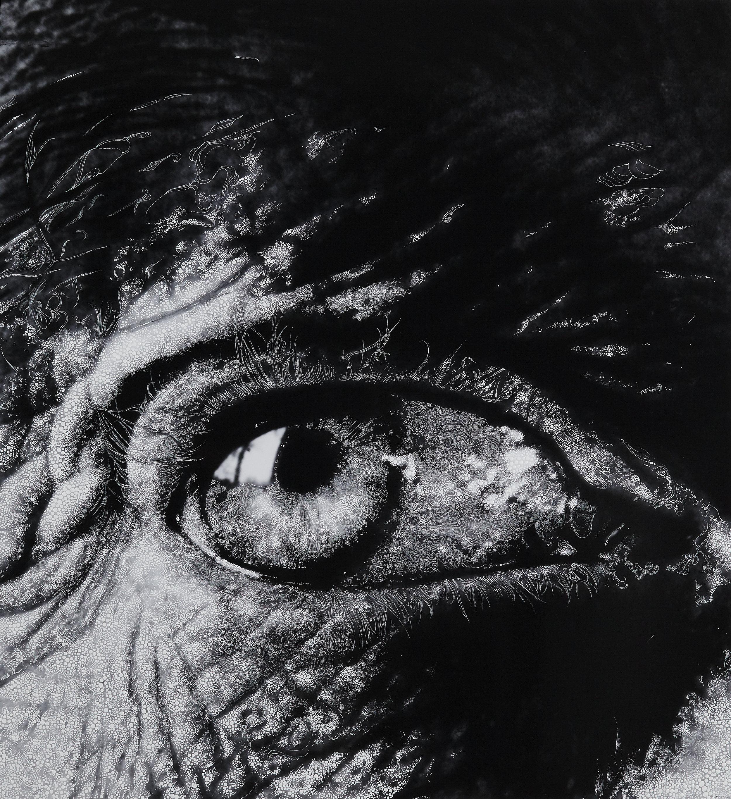 Eye 8 - 2012.jpg