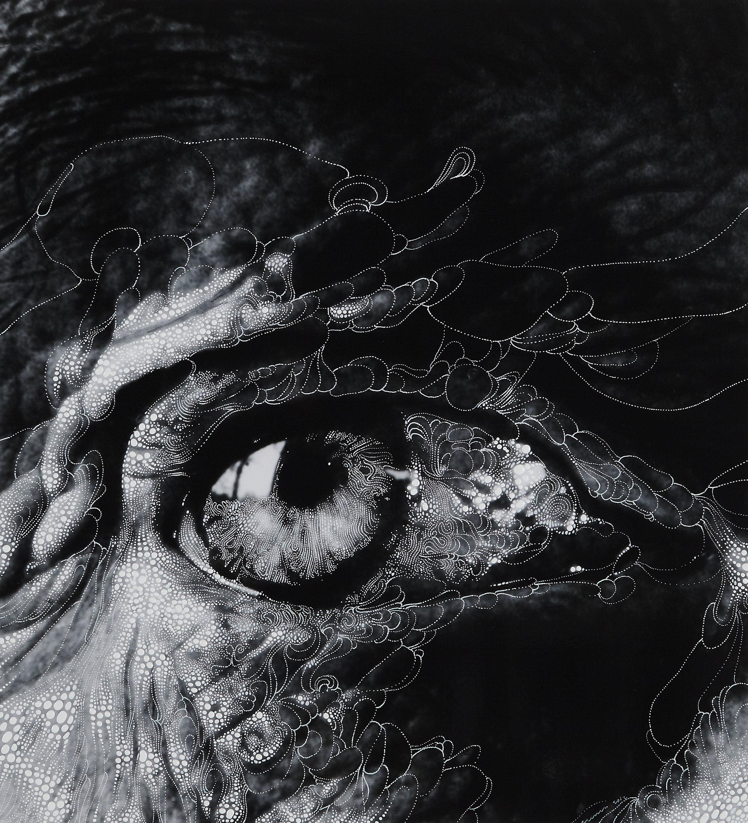 Eye 11 - 2012.jpg