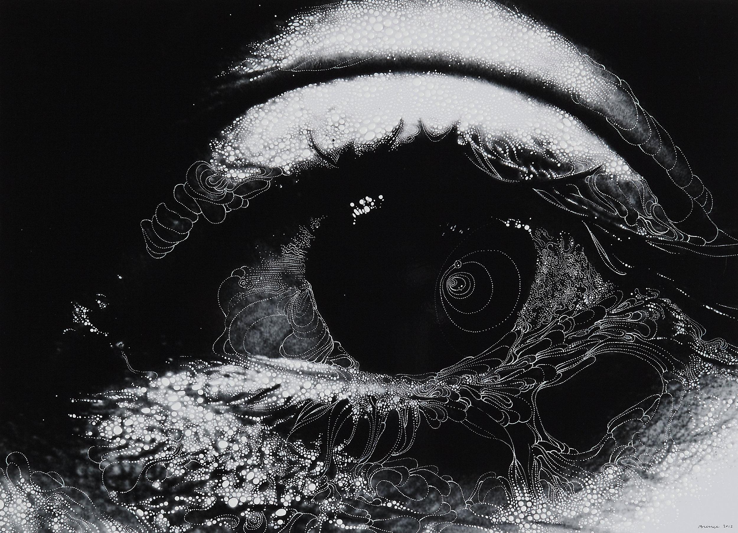 Eye 15 - 2012.jpg