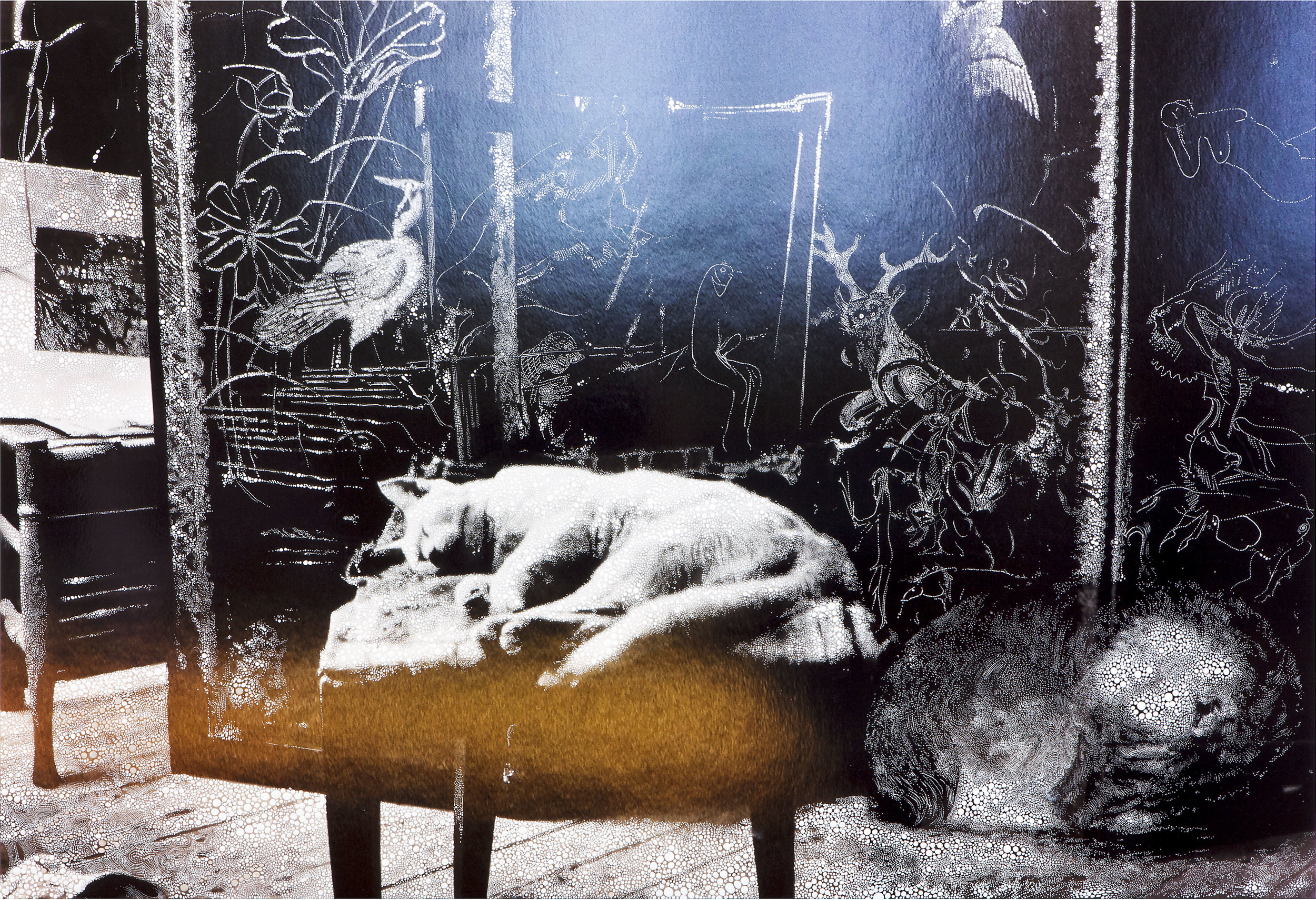 Cat and Sleeping Puppy in the Atelier