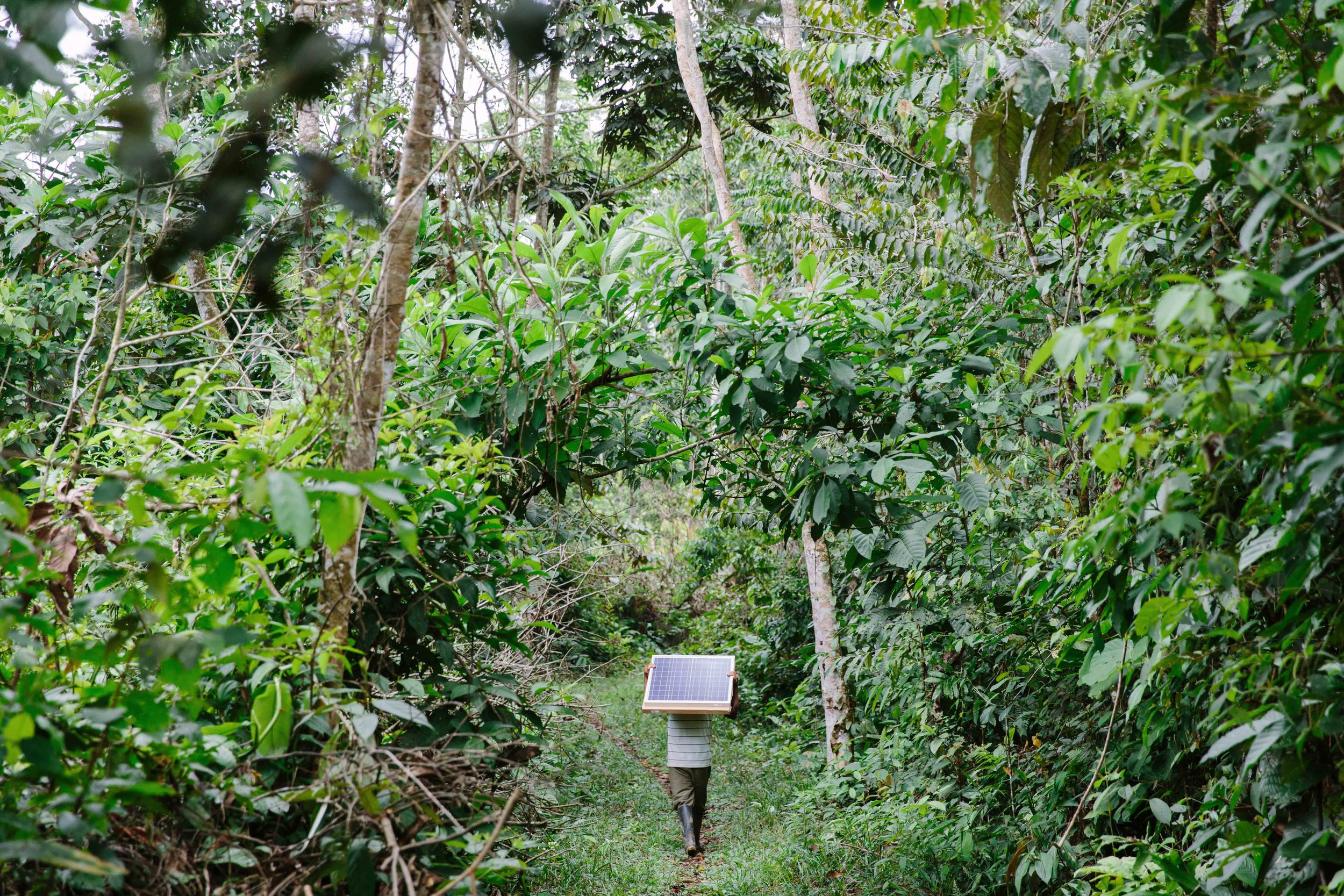 Solar in the Amazon