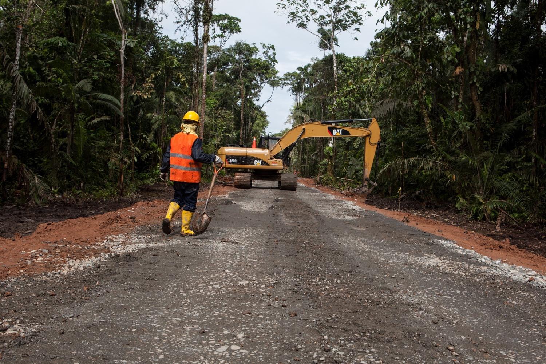 Straßen bohren sich tiefer und tiefer in die letzten unberührten Regenwaldgebiete von Ecuador.