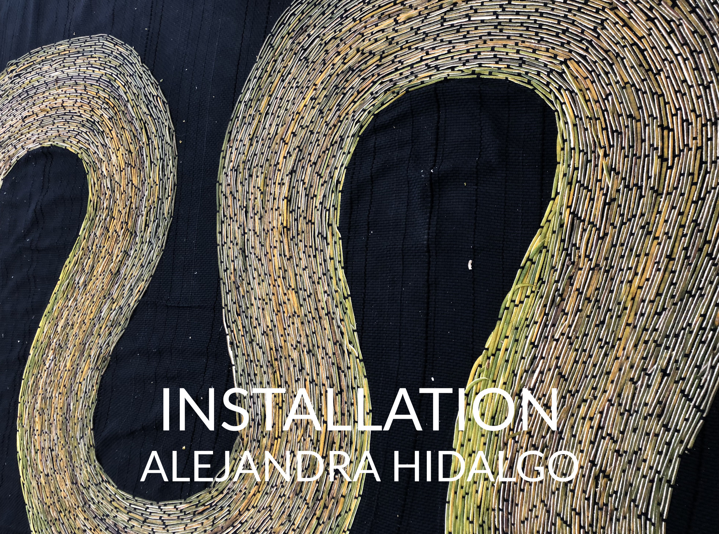 AlejandraInstallationweb.jpg