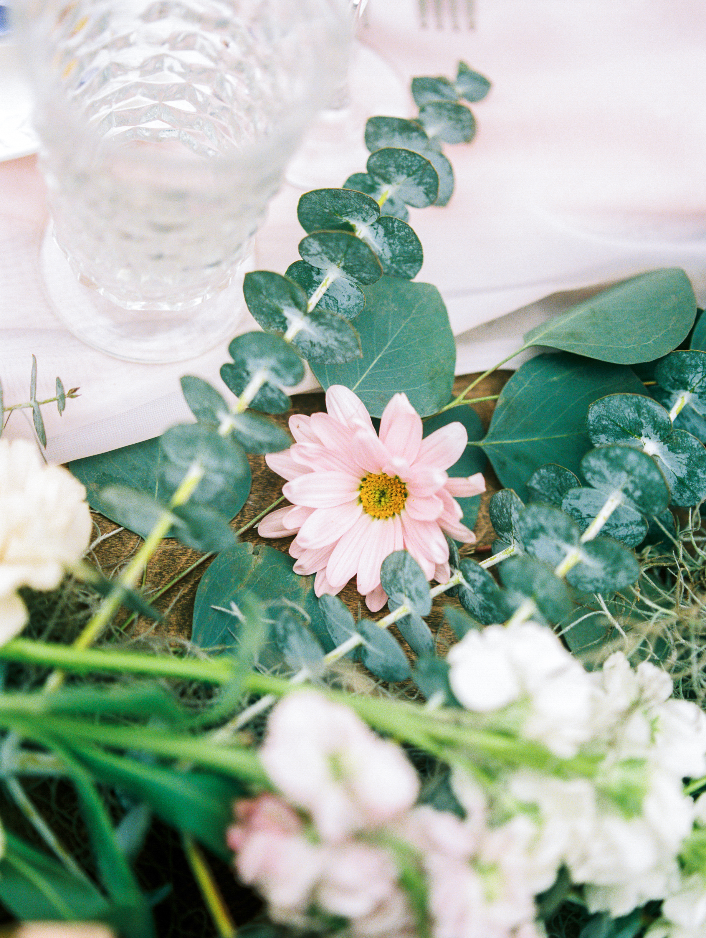 Ellie's Garden Spring Editorial by Lisa Silva Photography-51.jpg