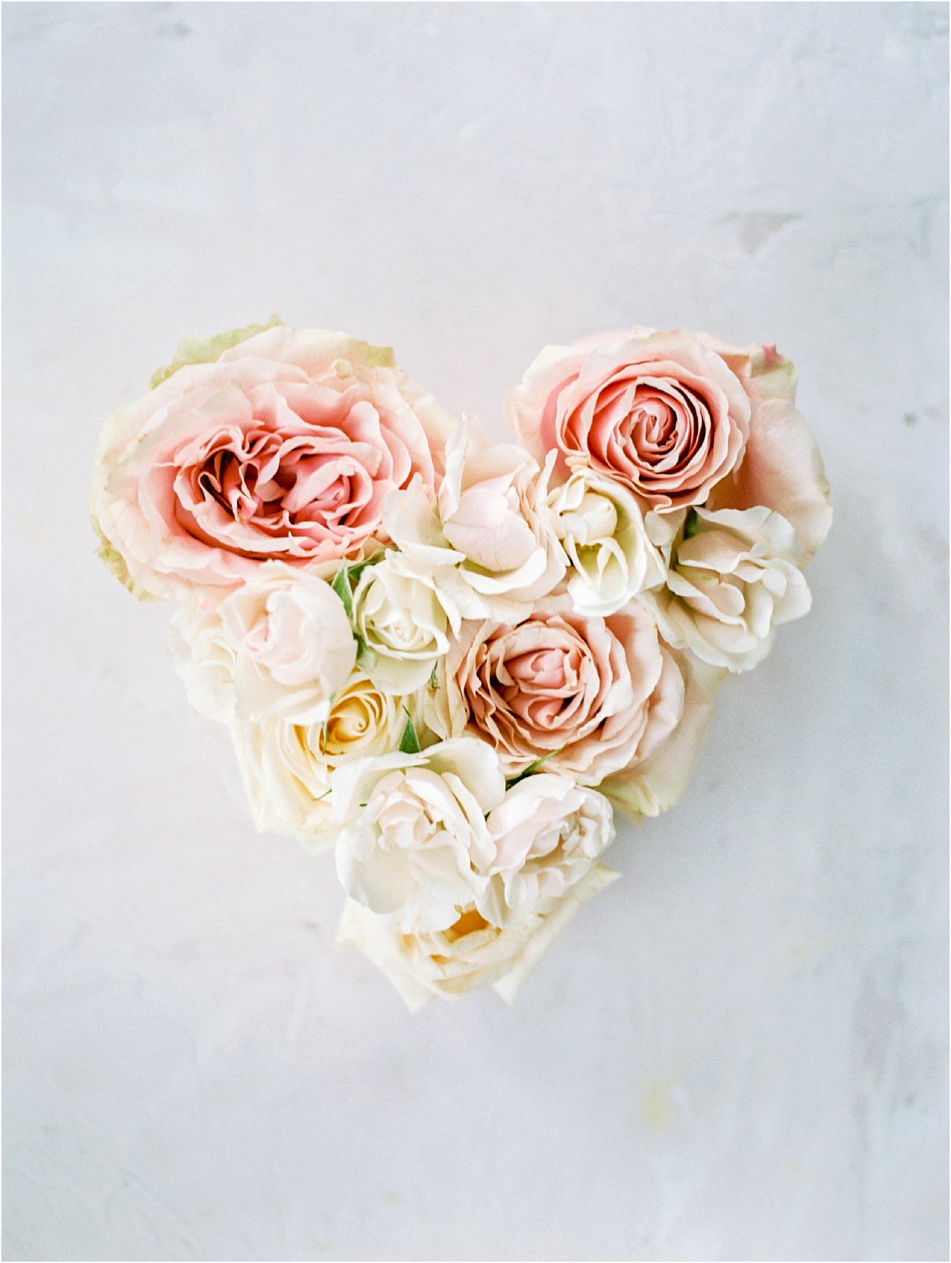Lisa Silva Photography- Ponte Vedra Beach, St. Augustine and Jacksonville, Florida Fine Art Film Wedding and Boudoir Photography- Elegant Blush  Wedding at Epping Forest Yacht Club in Jacksonville, Florida_0001.jpg