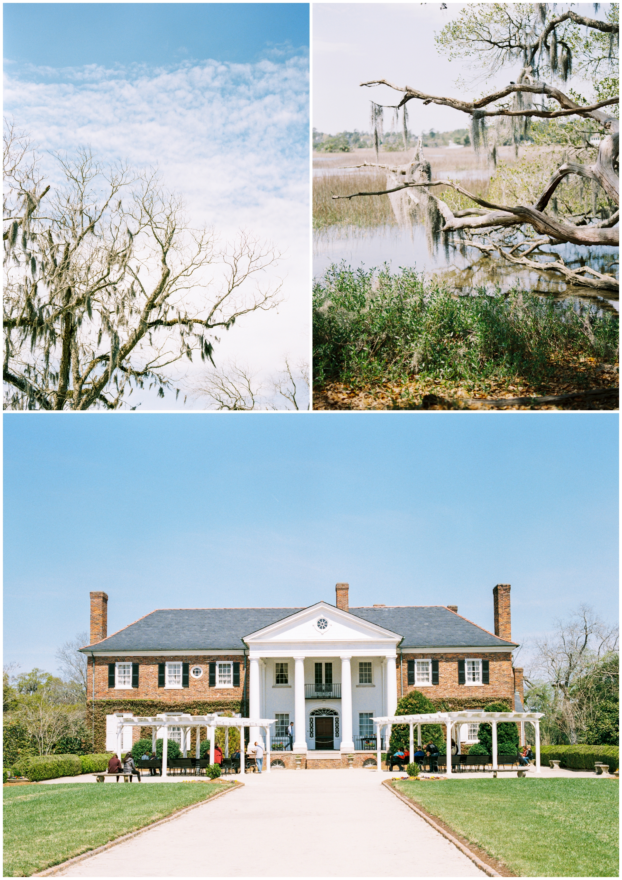 Boone Hall Plantation | Charleston, South Carolina