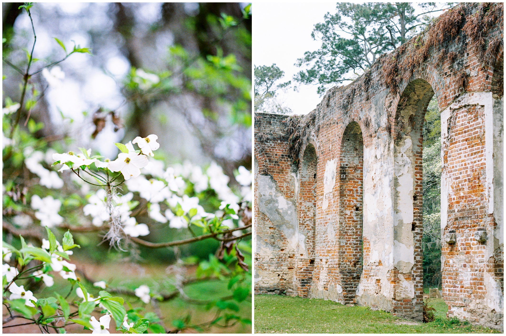 Old Sheldon Church Ruins | South Carolina