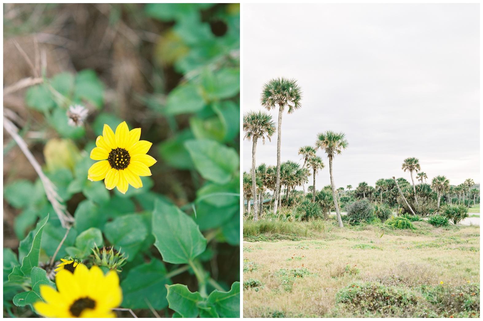 Lisa Silva Photography -Beachy Lifestyle Engagement Session in Palm Coast Florida - Jacksonville Film Photograpgers_0012.jpg