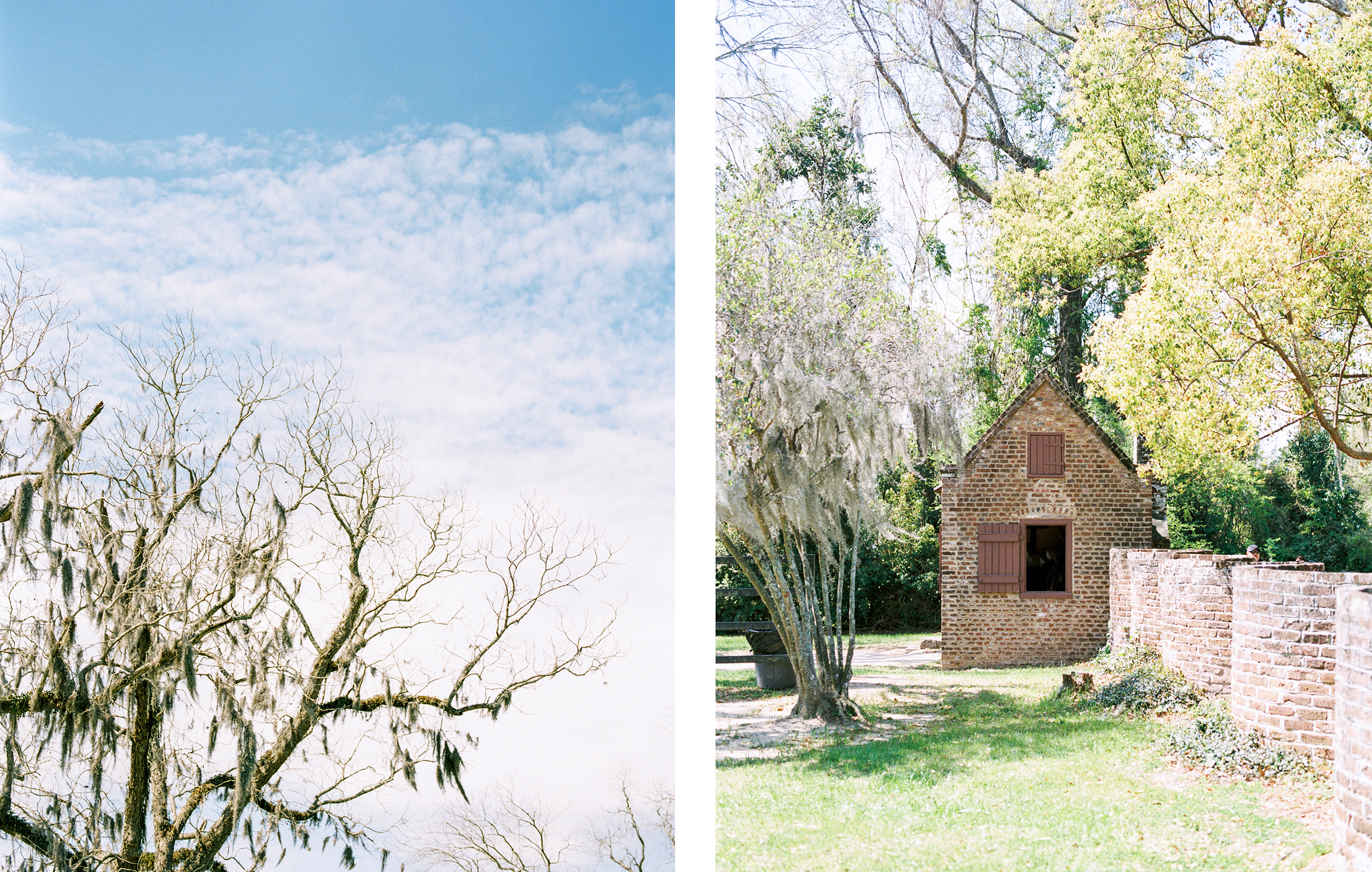 Lisa Silva Photography- Charleston and Jacksonville Fine Art Film Wedding Photography-13.jpg
