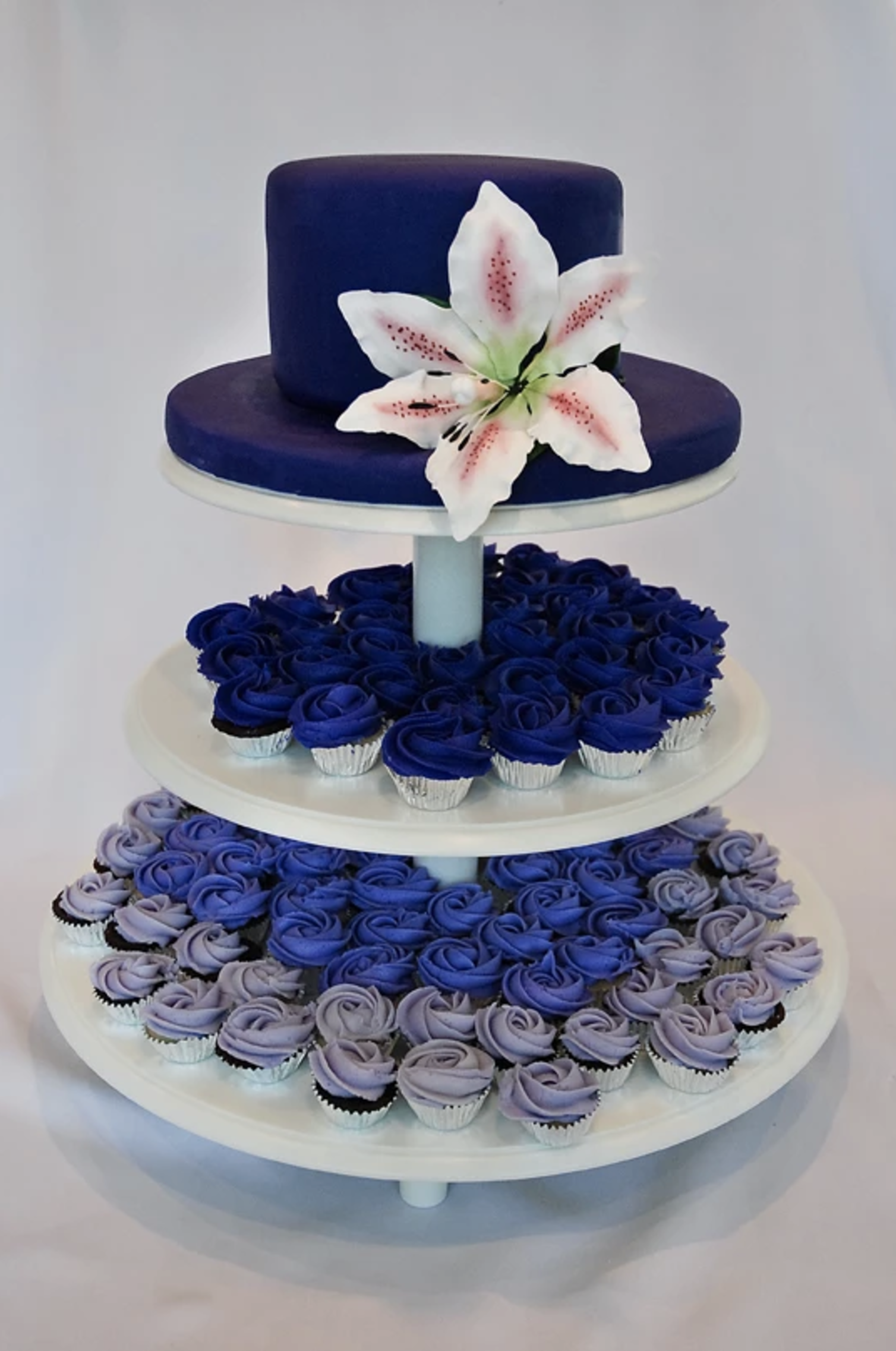 Blue Cupcakes and Blue Cake.png
