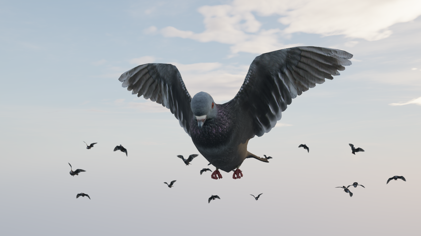 Detail of the pigeon model.