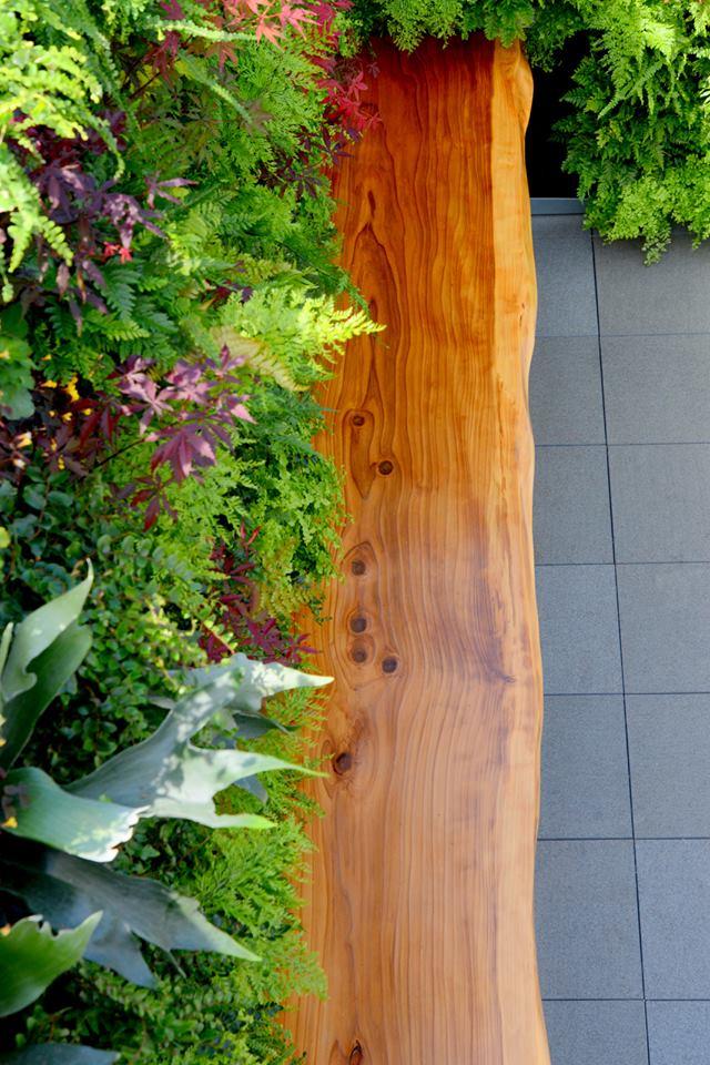 vertical garden wall.jpg