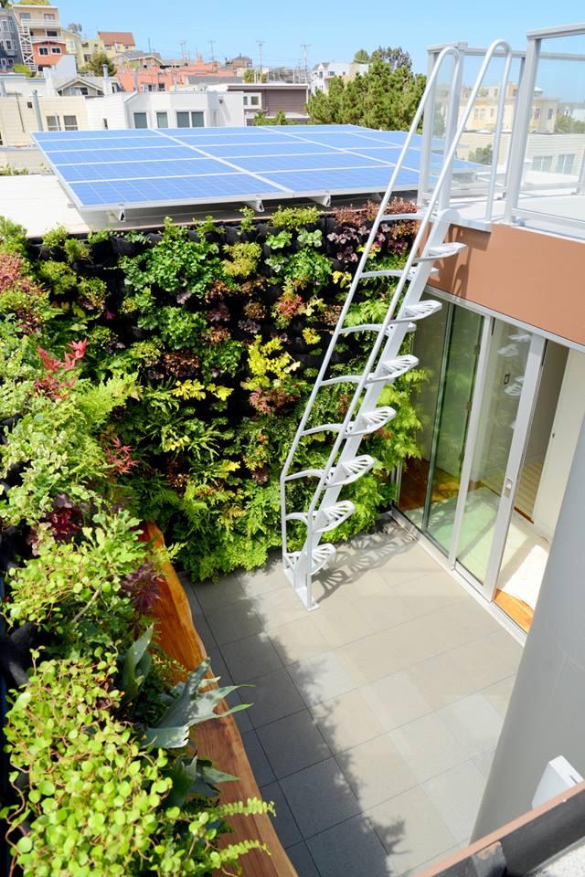 vertical garden_solar panels.jpg