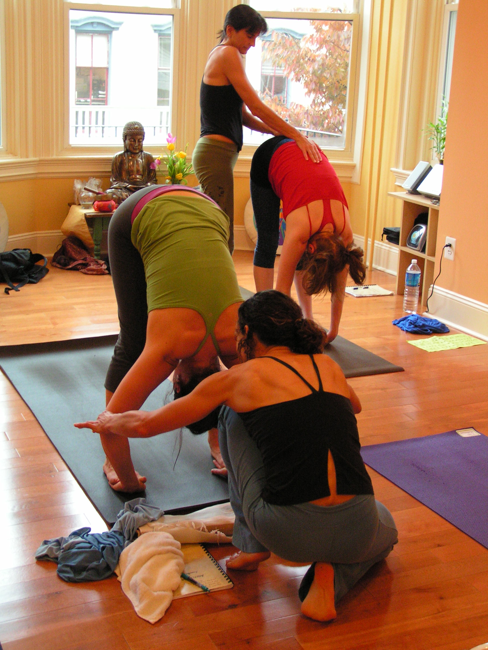 Teacher Trainings Sun Dog Yoga