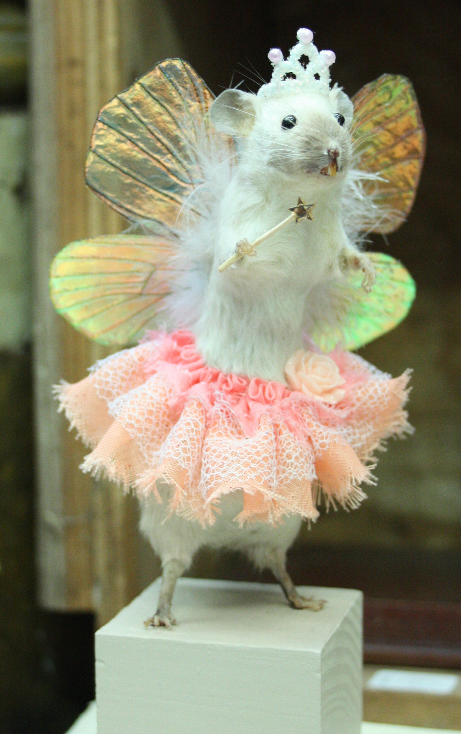 Give me a stuffed rodent in a full ballerina skirt and I'm on board. -